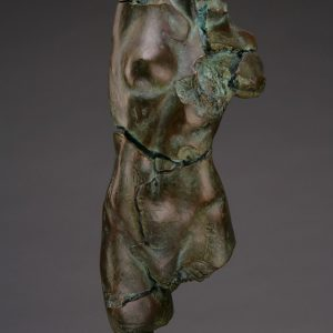 Entitled Apple P-40, this is a photo of a fragment of a one-quarter life size bronze sculpture. Depicted is the torso of a nude female figure missing her legs, arms, shoulders, neck and head. By sculptor Blake Ward.
