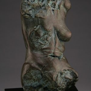 Entitled Claymore M18A, this is a photo of a fragment of a one-quarter life size bronze sculpture. Depicted is the torso of a nude female figure missing her legs, arms, shoulders, neck and head. By sculptor Blake Ward.