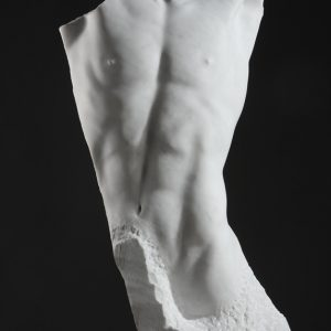 Entitled Vestige, this is a photograph depicting a life-size marble sculpture of a male torso, missing a large section from the left side of the torso, created by sculptor Blake Ward